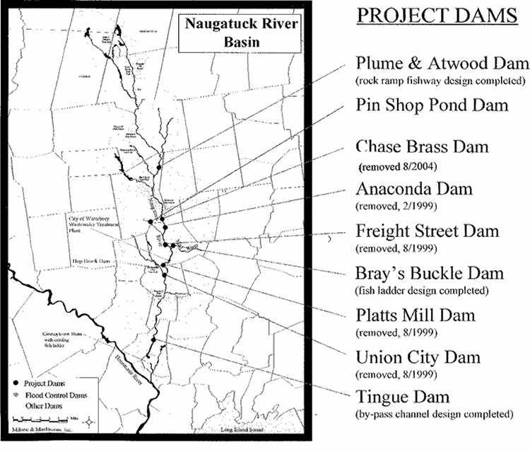 Naugatuck River Dams (Courtesy:Naugatuck-Pomperaug Chapter Trout Unlimited)