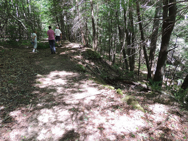 Woodbury Greenway Site Walk 6/15/2016